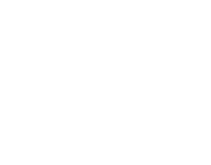 Guanaco Tech Ltd.